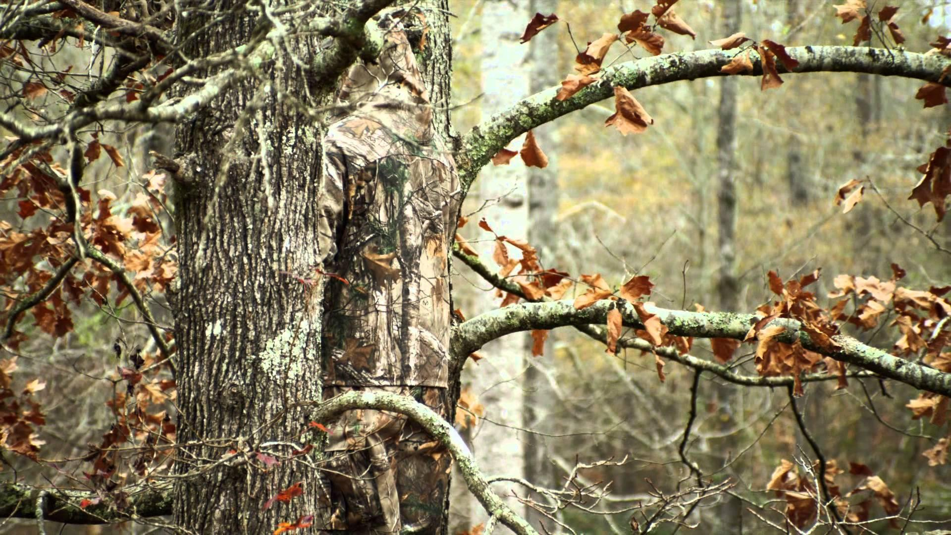 Download Realtree Camo Iphone Wallpaper Hd Backgrounds
