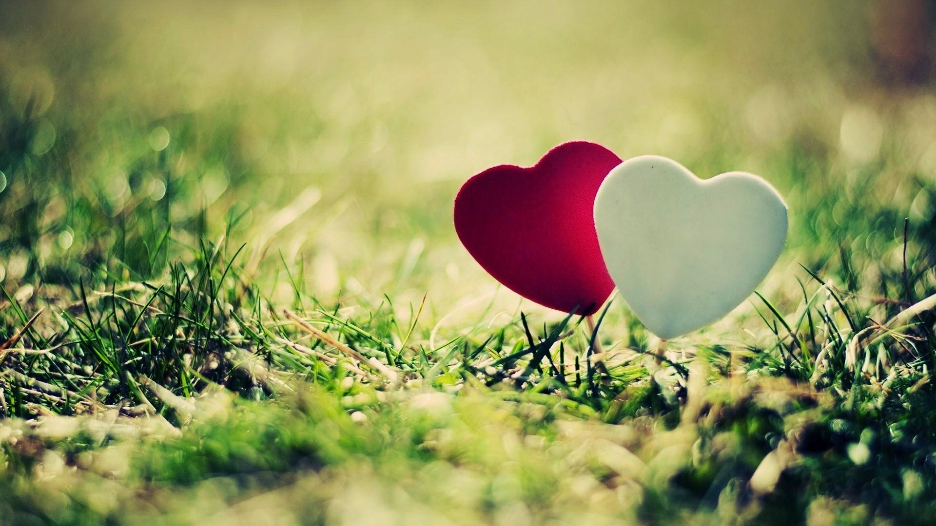 Download Hd Wallpapers Download Love Hd Backgrounds Download