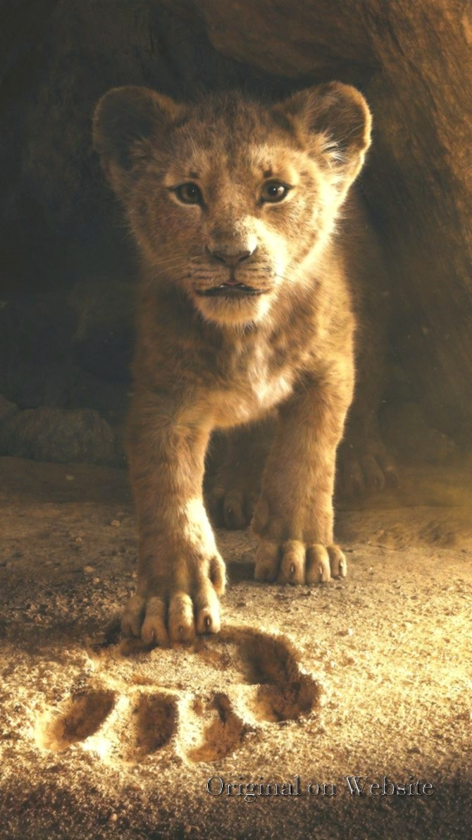 Download Lion King Wallpaper Hd Backgrounds Download Itl Cat