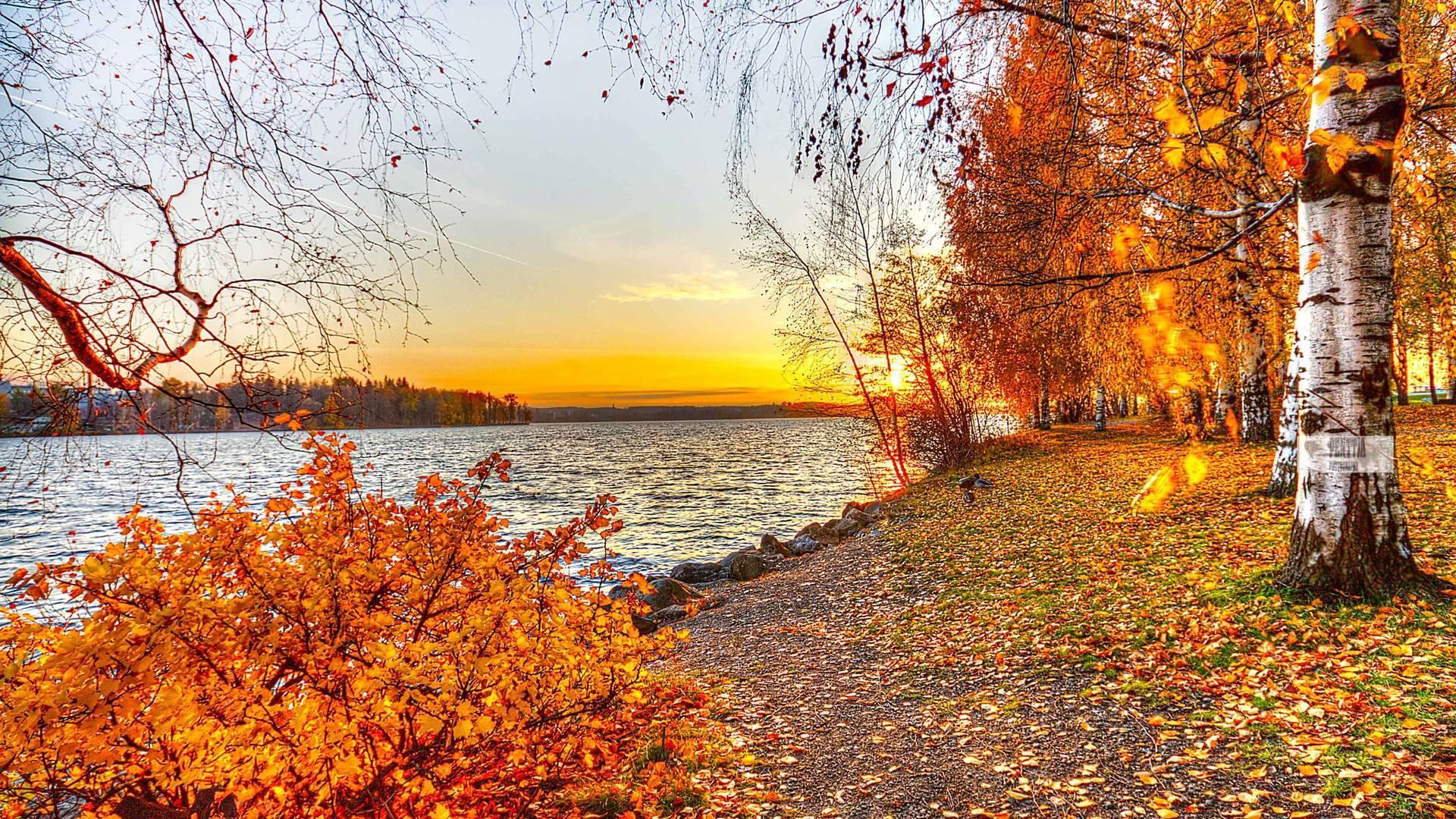Download Autumn Desktop Wallpaper Hd Backgrounds Download