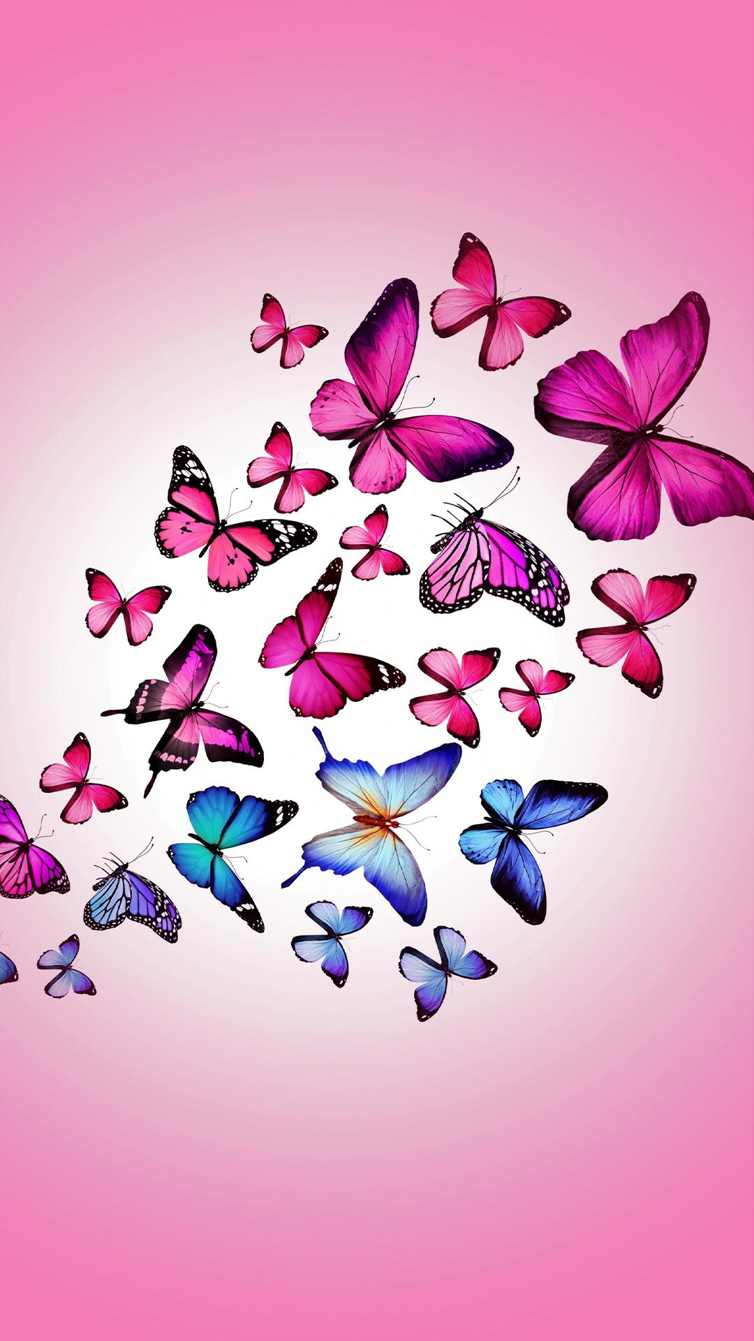 Download Pink Butterflies Wallpaper, HD Backgrounds Download