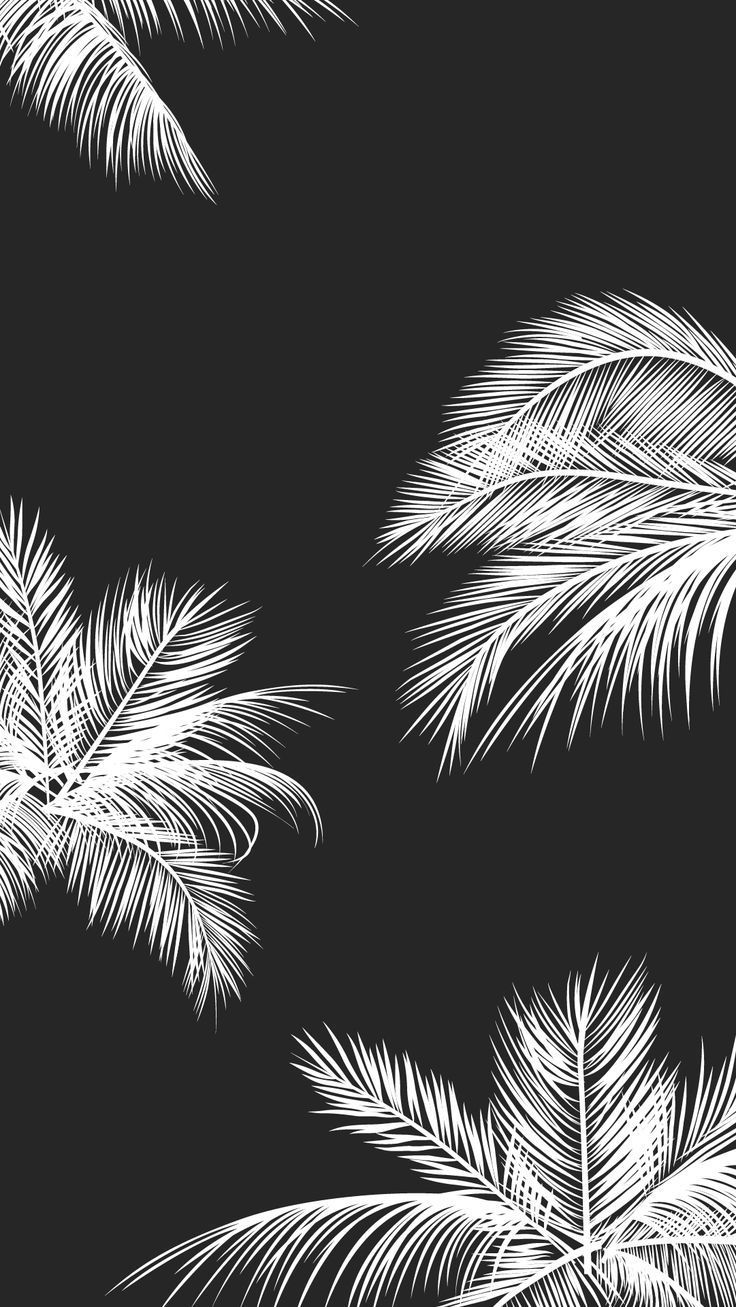 Download Tumblr Black And White Wallpaper Hd Backgrounds