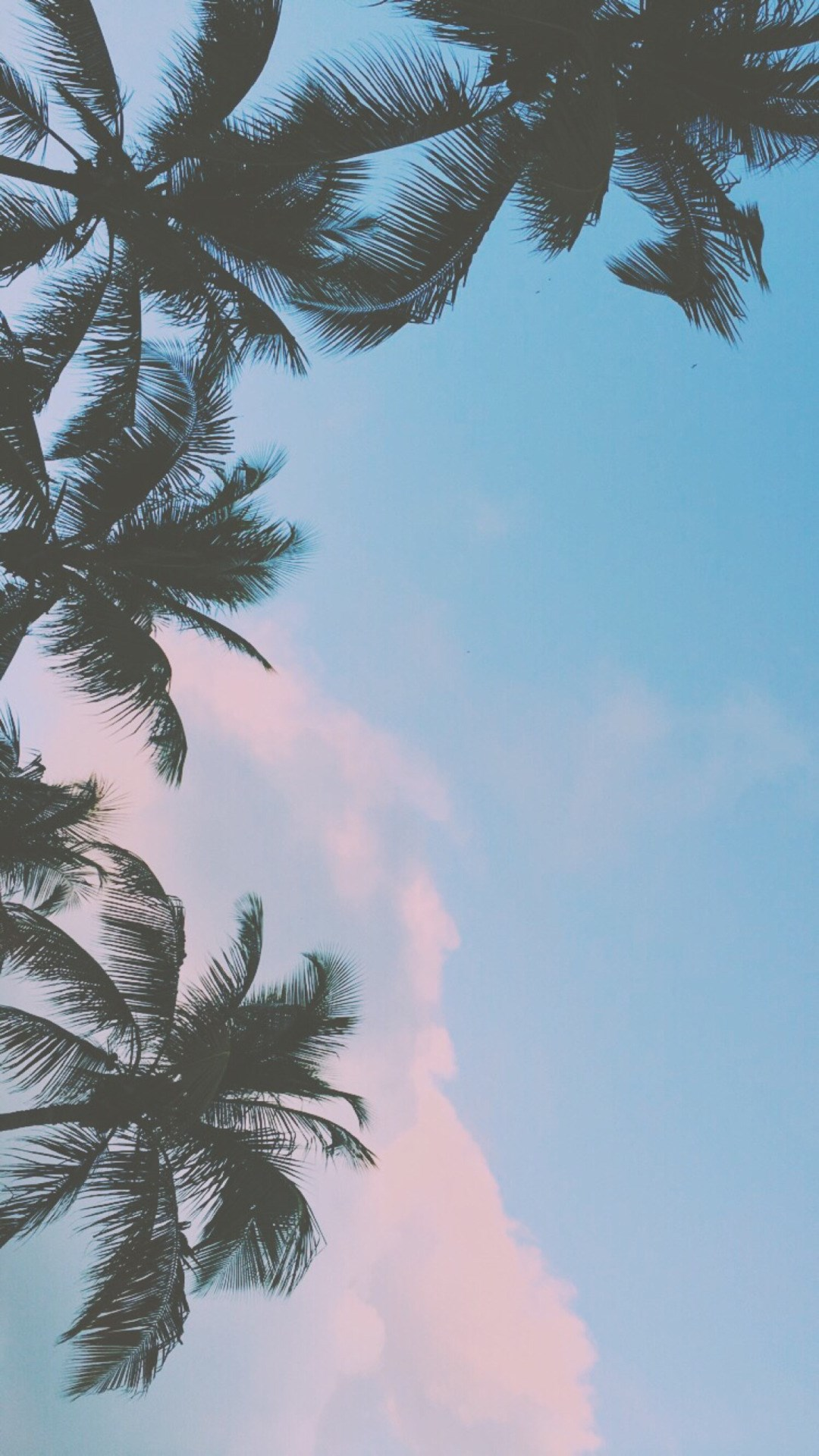 Tumblr Wallpapers ➵ - Chill Iphone Background , HD Wallpaper & Backgrounds
