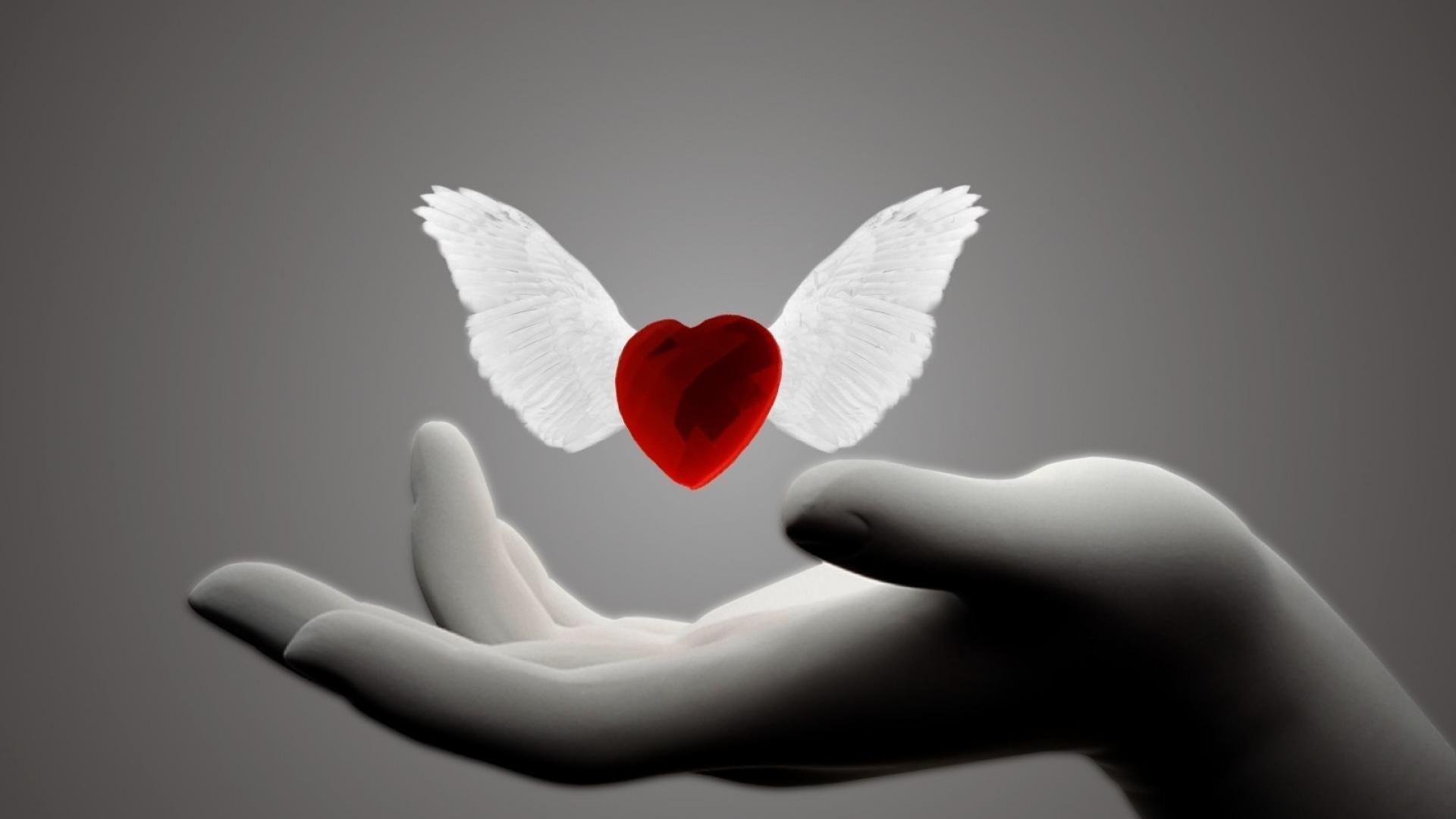 Loving Heart Background Wallpaper Hd New Wallpaper Hd Love