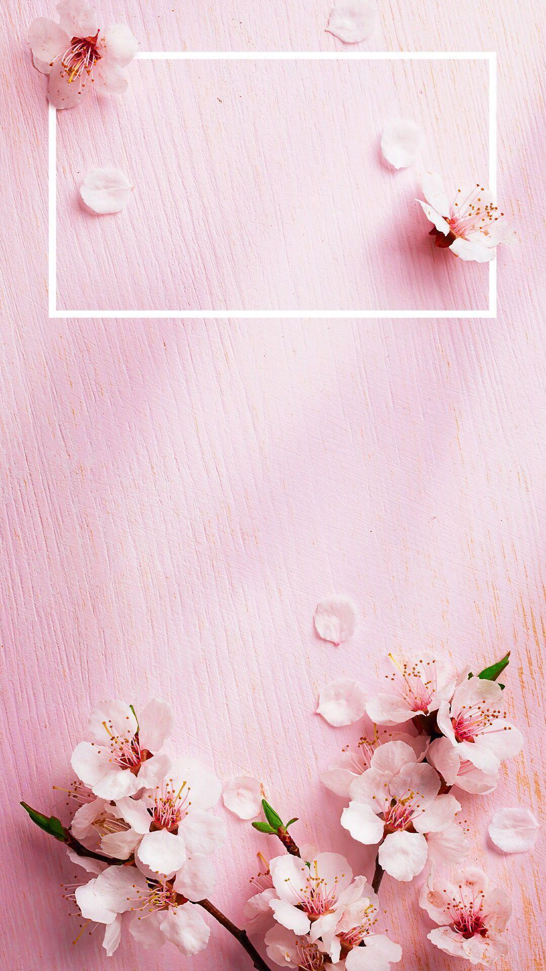 Nice Rose Gold Iphone Aesthetic 10788 Hd Wallpaper
