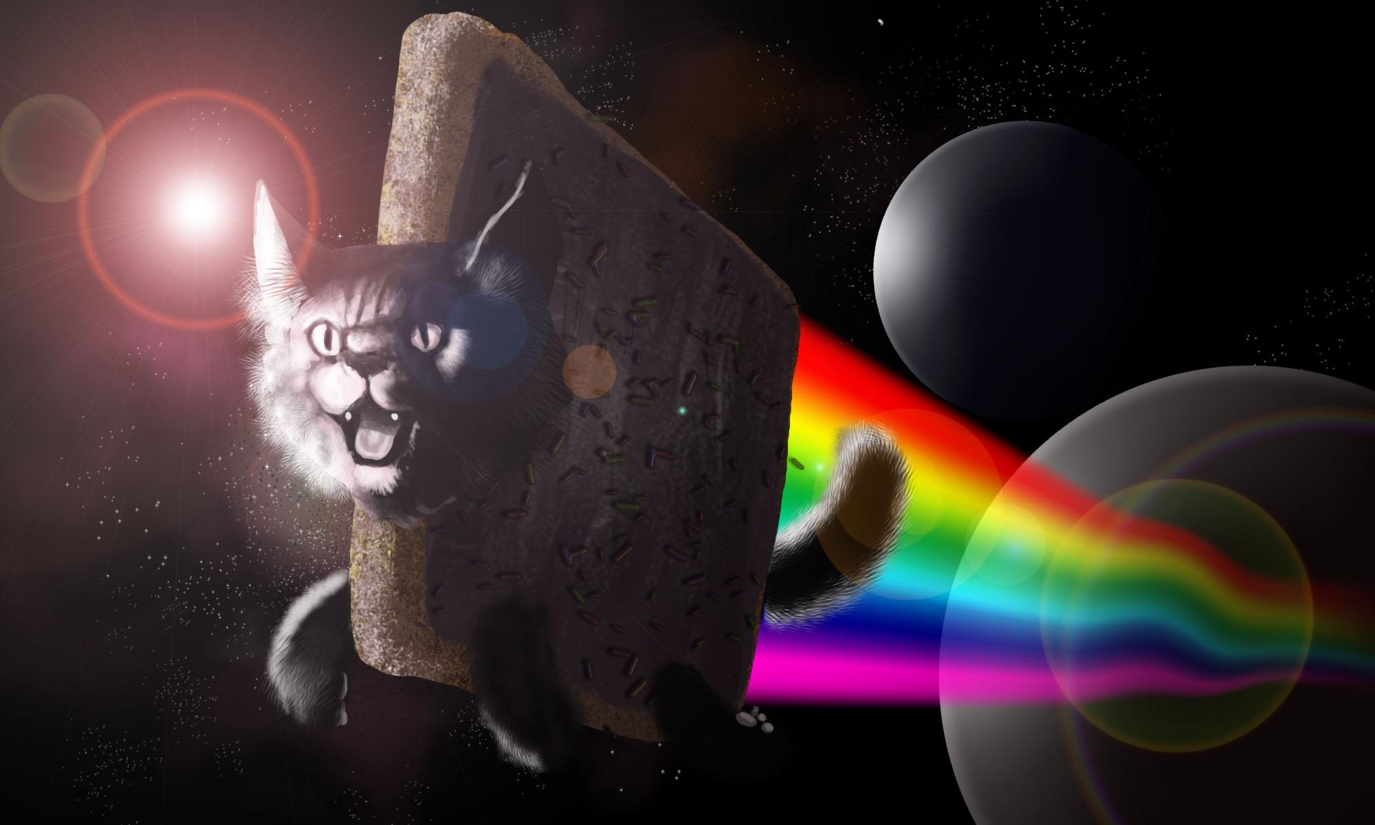 Meme Wallpaper - Nyan Cat , HD Wallpaper & Backgrounds