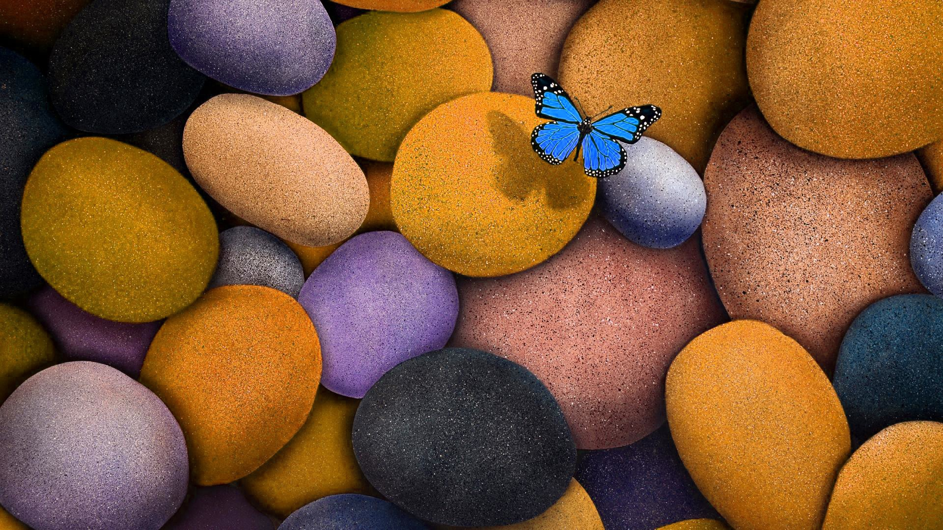 3d Wallpaper Hd For Laptop - Pretty Butterfly Pictures For Desktop Background , HD Wallpaper & Backgrounds