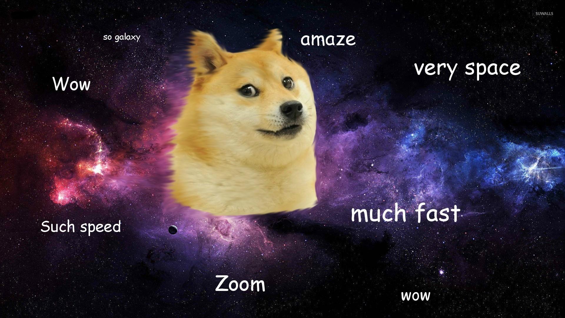Doge [3] Wallpaper - Doge Meme Space , HD Wallpaper & Backgrounds