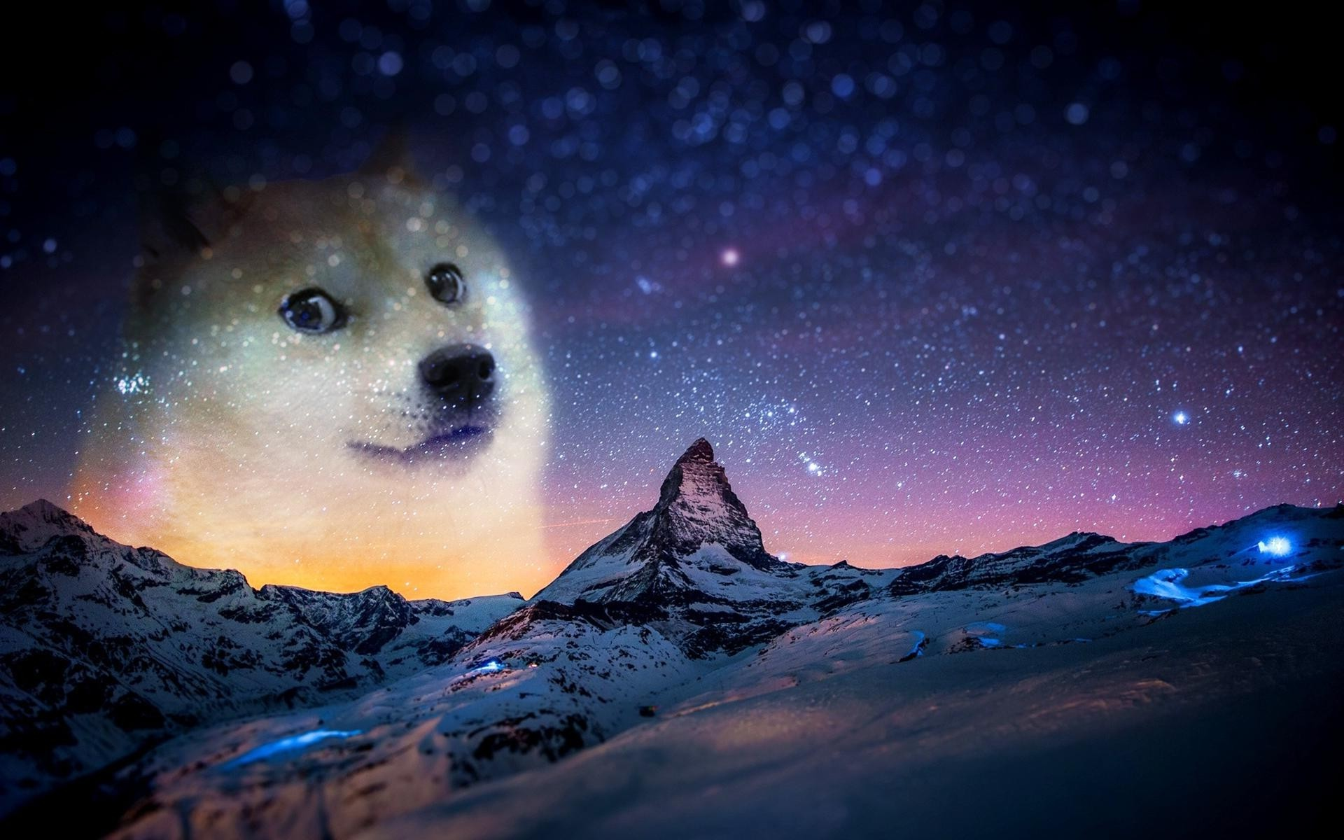 Doge Meme Wallpaper,meme , HD Wallpaper & Backgrounds