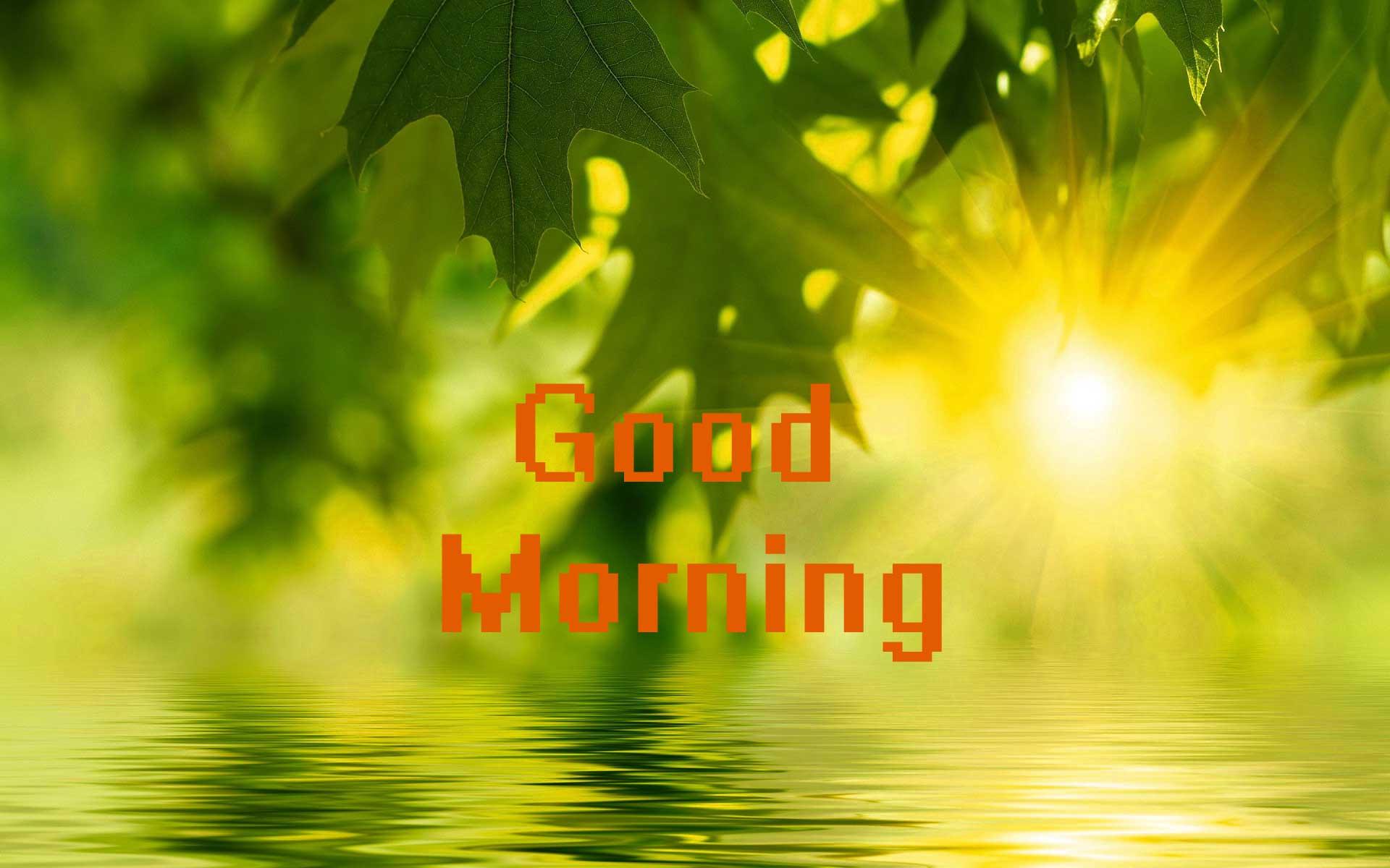 Good Morning Sunshine Nature Photo - Whatsapp Good Morning Nature , HD Wallpaper & Backgrounds