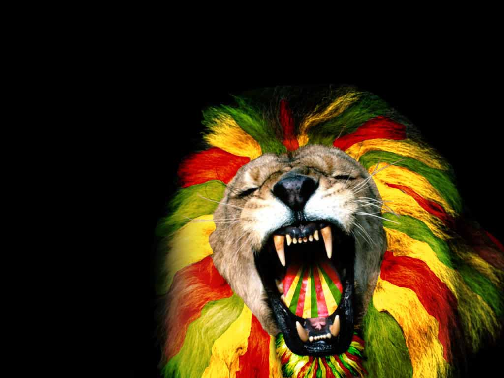 Download - Lion In Rasta Colors , HD Wallpaper & Backgrounds