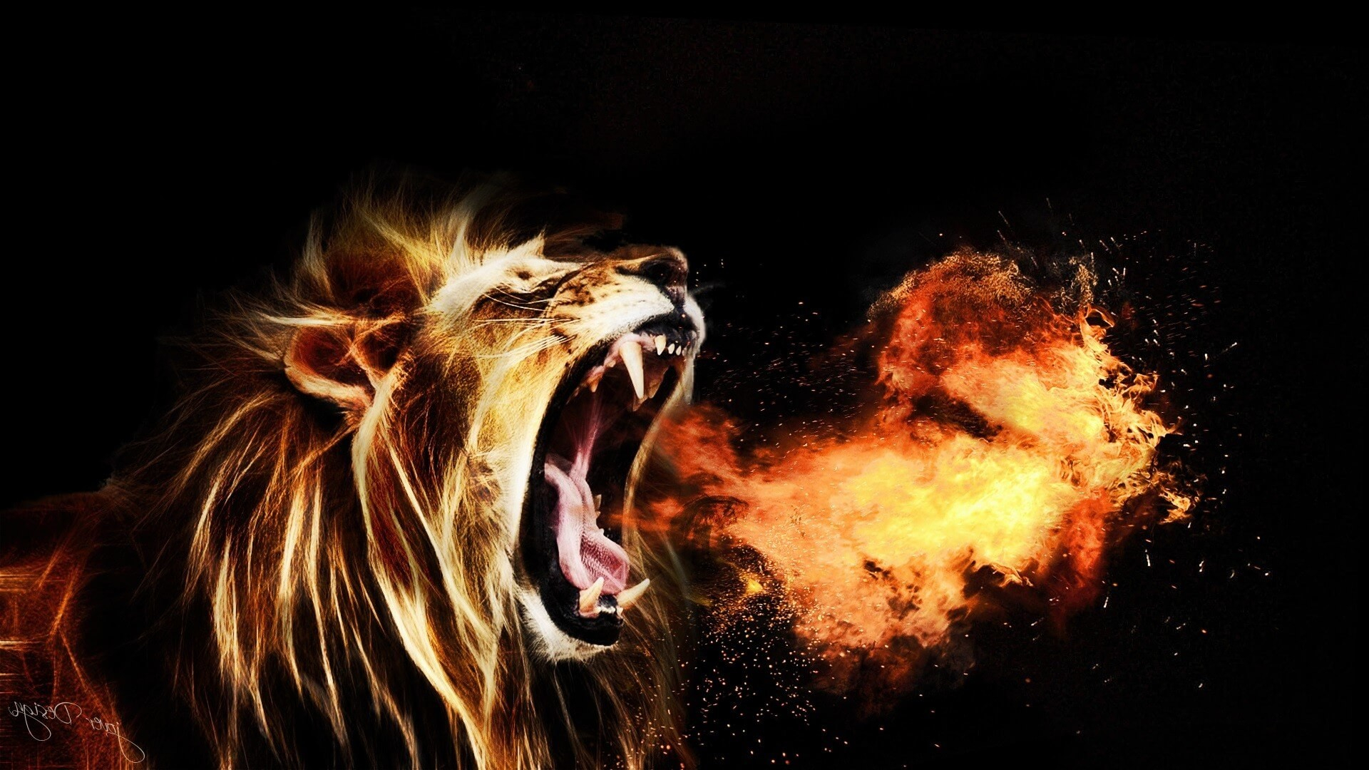 Download <== - Roaring Lion Images Hd , HD Wallpaper & Backgrounds