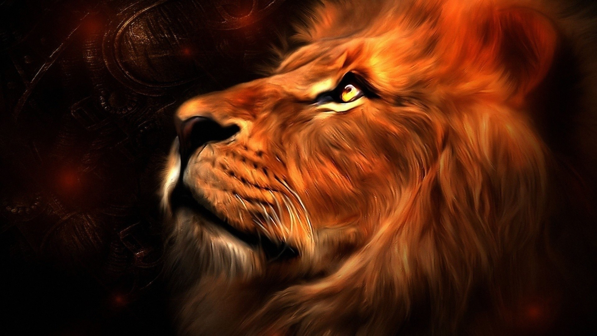 Lion Wallpapers - High Resolution Wallpapers Lion , HD Wallpaper & Backgrounds
