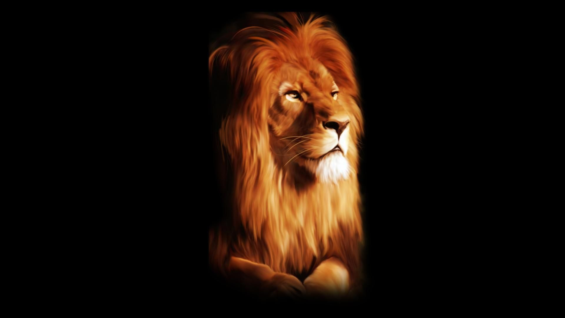 Group Of Black 3d Lion Wallpapers - Tapeta Na Pulpit Lew , HD Wallpaper & Backgrounds
