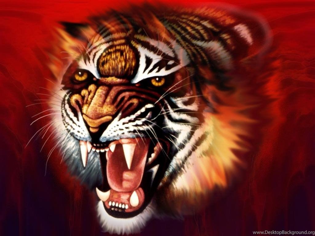 Tiger Images Hd 3d , HD Wallpaper & Backgrounds
