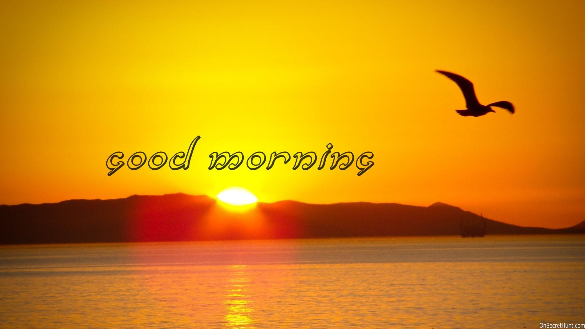 Free Good Morning Wallpapers Download Wallpapers - Sunrise Nature , HD Wallpaper & Backgrounds