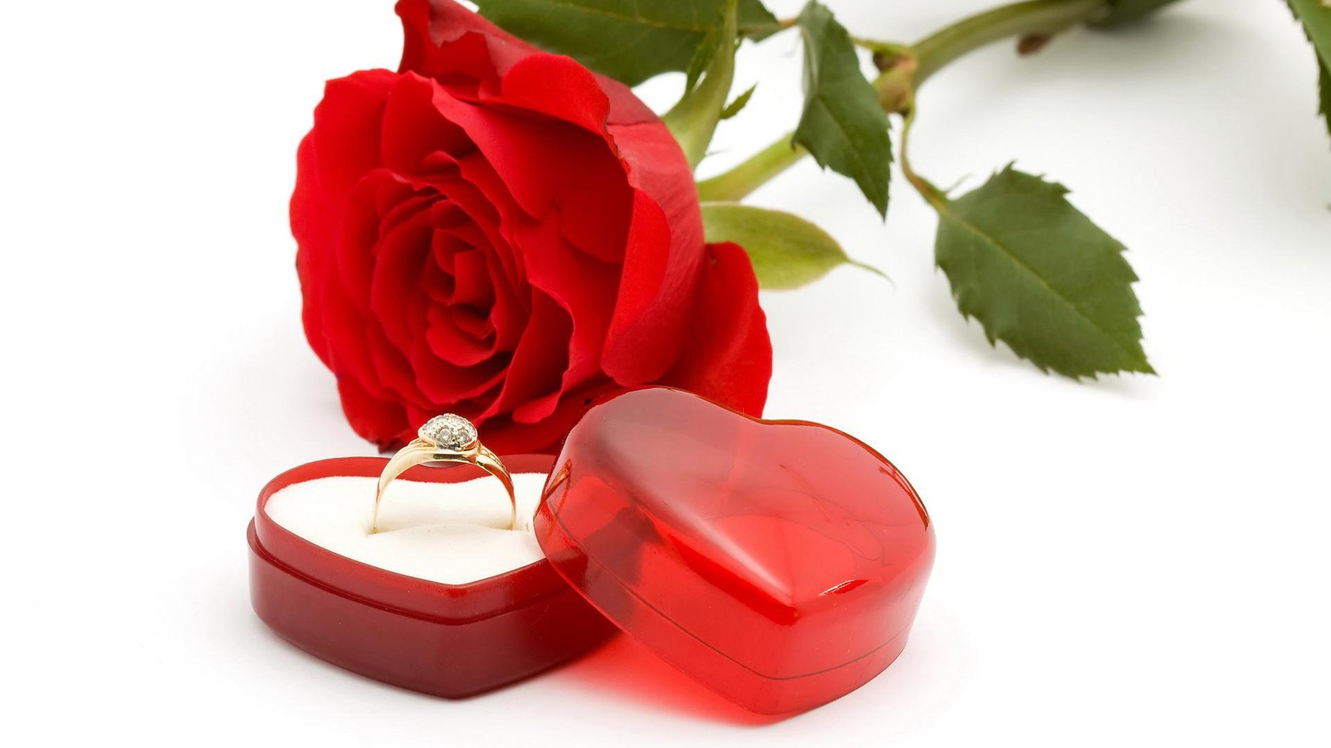 - - Red Roses And Hearts , HD Wallpaper & Backgrounds