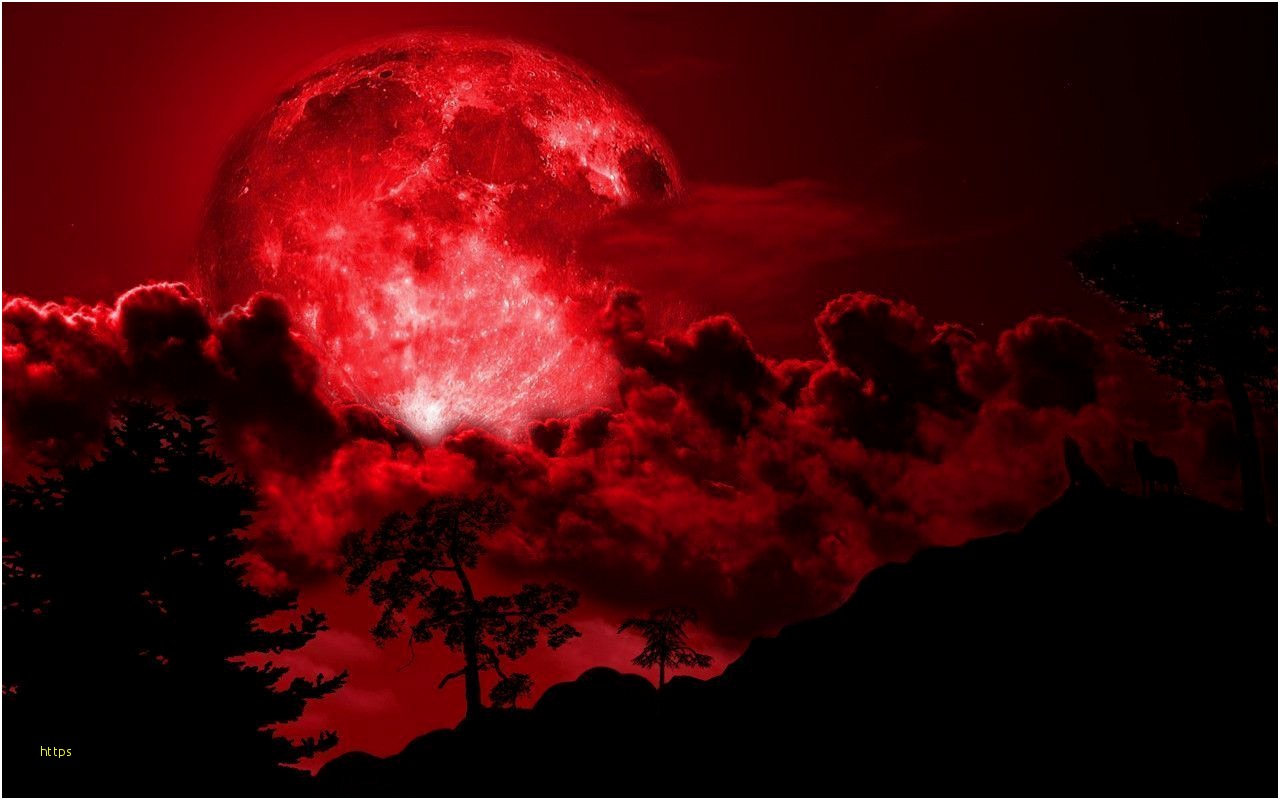 Dark Side Of The Moon Wallpaper Elegant Red Full Moon Red Moon