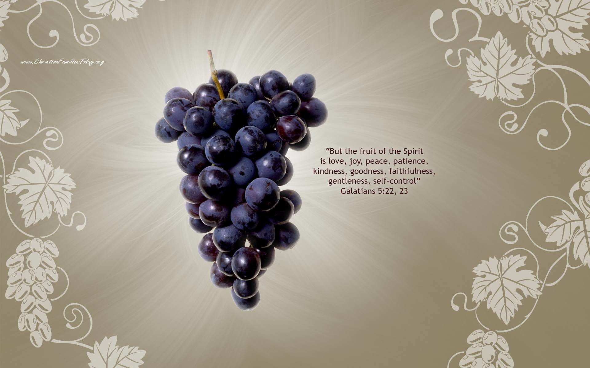 Holy Gaben Wallpaper Px Free Download Fruits Of The Holy