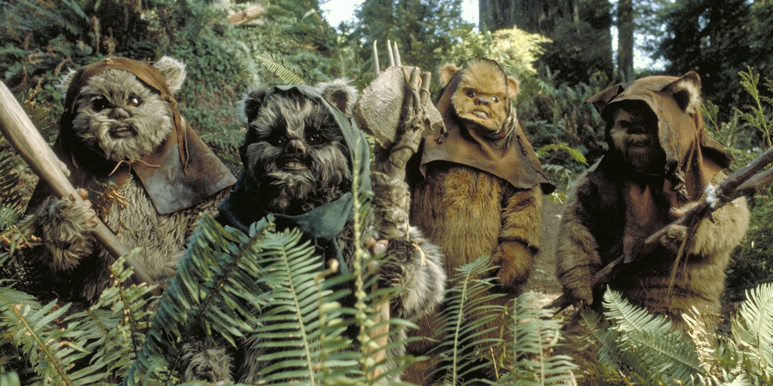 Are Star Wars Star Wars Return Of The Jedi Ewoks 1061637 Hd Wallpaper Backgrounds Download