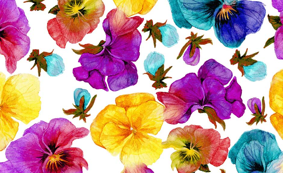 Flowers - Watercolor Painting , HD Wallpaper & Backgrounds