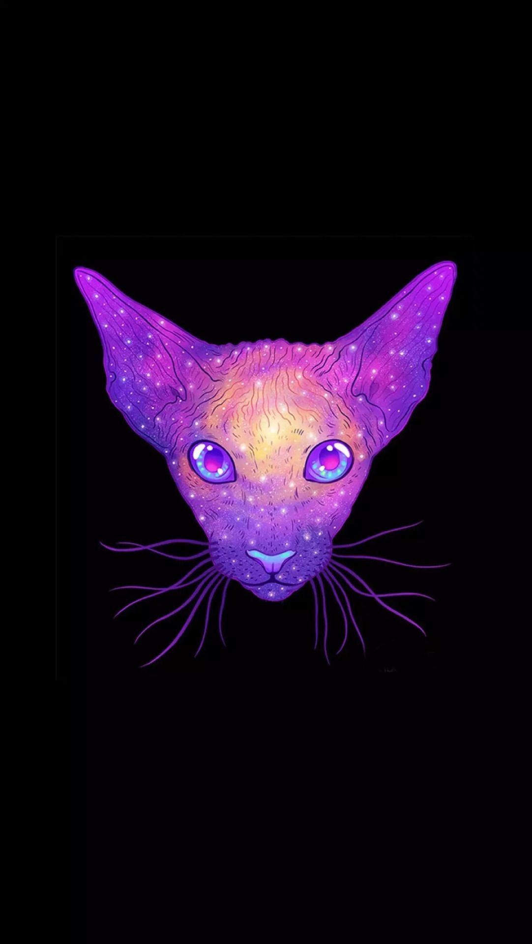 Iphone Background Arka Planlar Galaxy Cat - Iphone 6 Cat , HD Wallpaper & Backgrounds