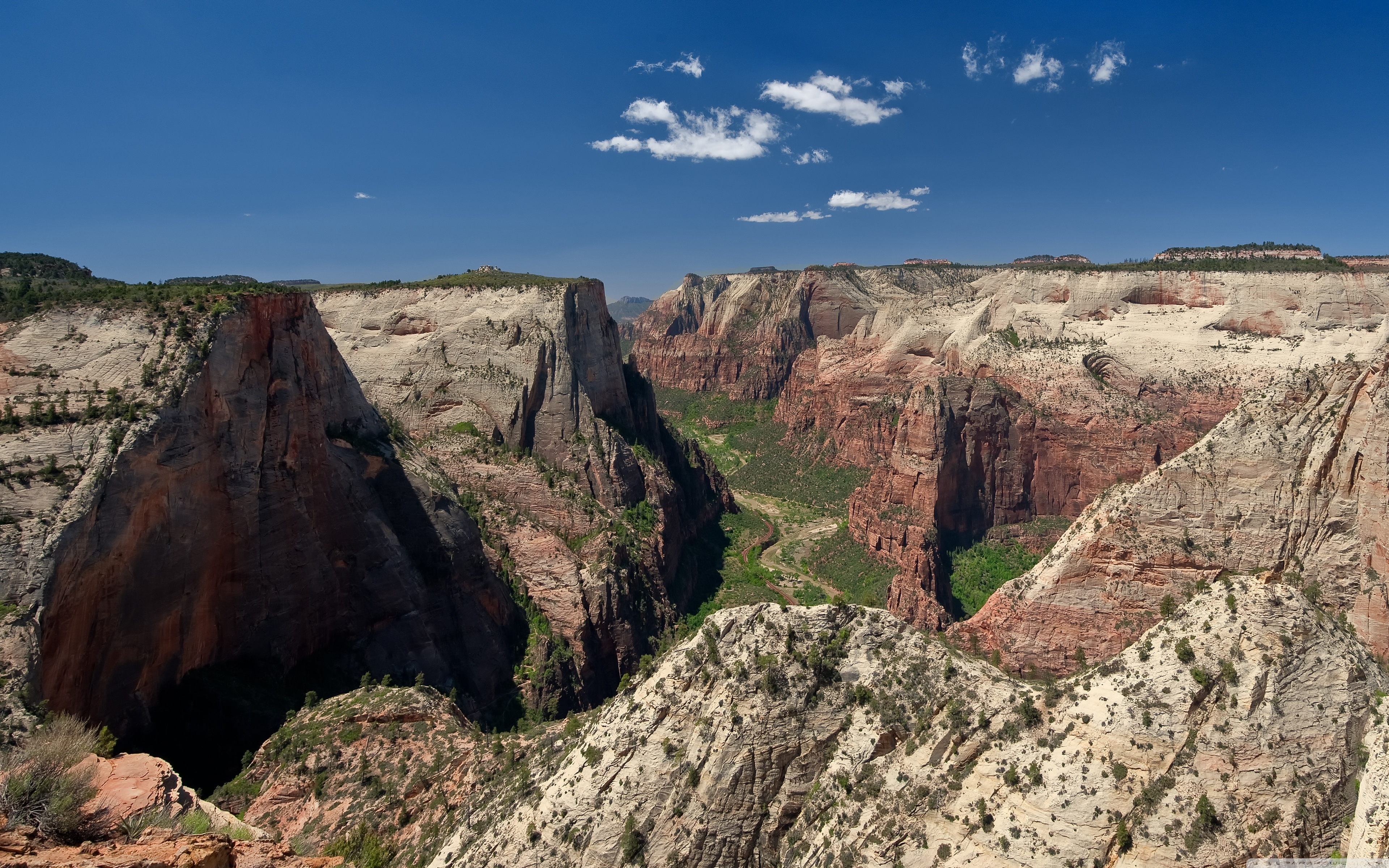 Wide 16 Zion National Park 1074484 Hd Wallpaper