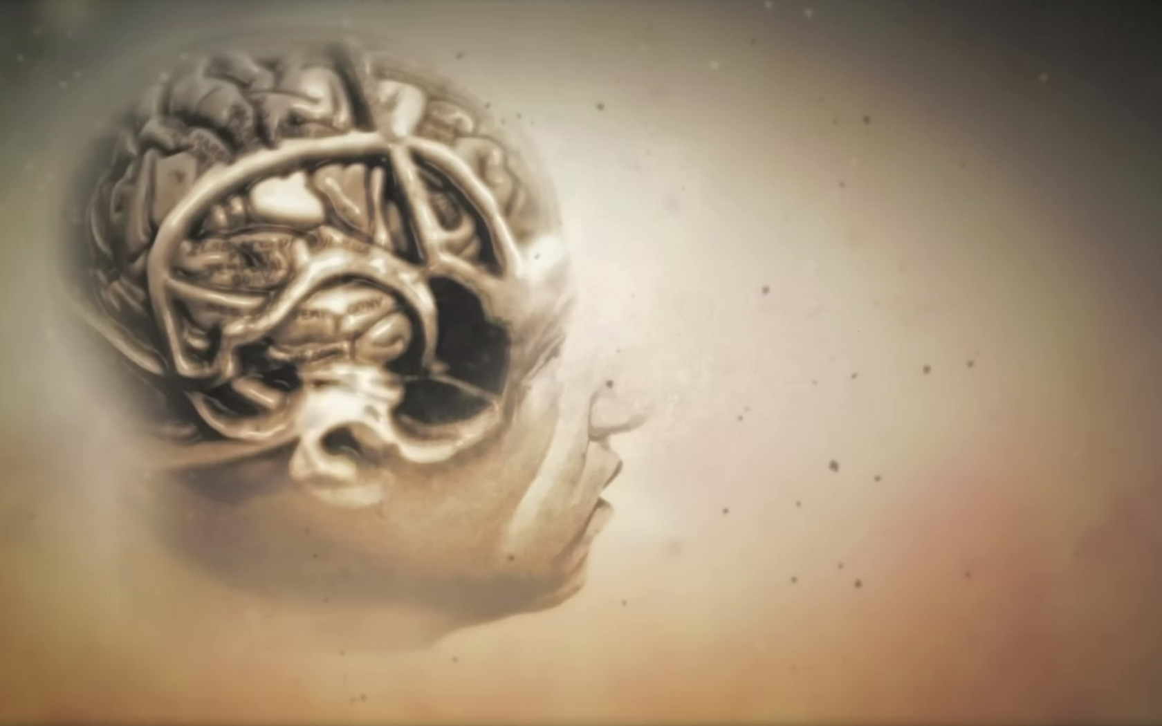 Image For 3d Brain 1080p Hd Wallpaper Wp6806972 Dr House Opening 1084358 Hd Wallpaper Backgrounds Download