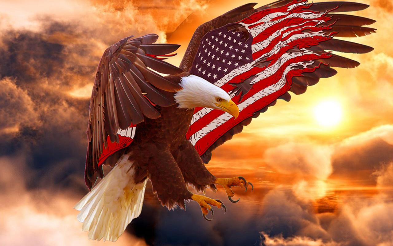 Bald Eagle Wallpaper American Flag Bald Eagle 113443 Hd