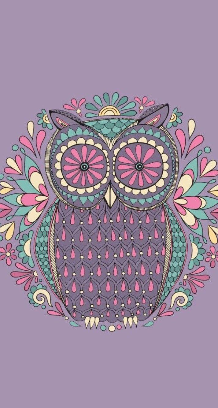 Colorful Cartoon Owl Wallpapers Free Is 4k Wallpaper Cute