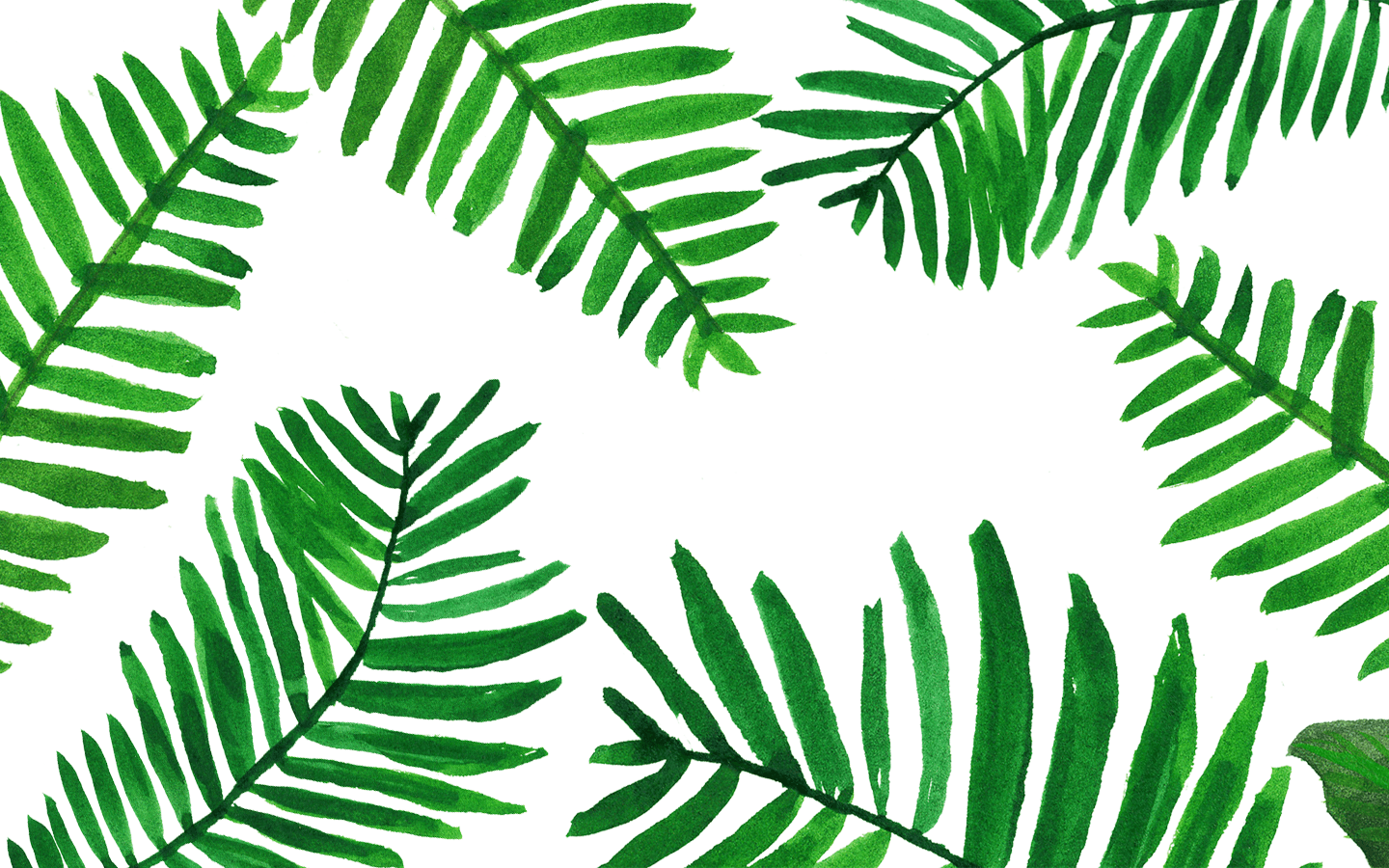 Palm Leaves Wallpaper From Www Palm Leaves Background Desktop 116181 Hd Wallpaper Backgrounds Download Find the perfect tropical leaves background stock illustrations from getty images. palm leaves background desktop