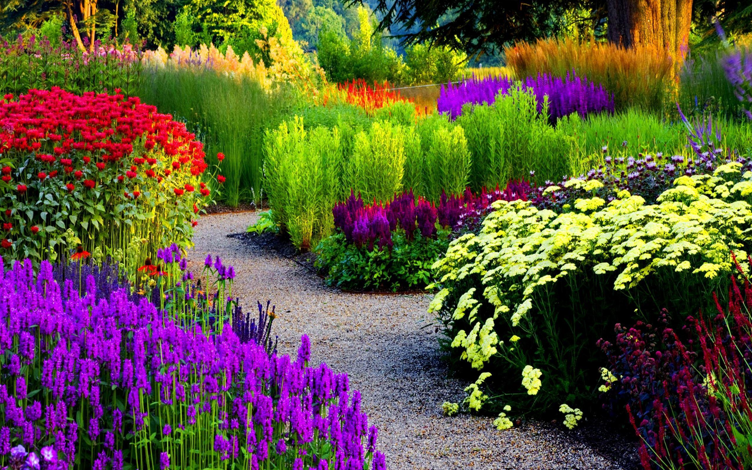 Best 53 Garden Backgrounds For Computers On Hipwallpaper - Most Beautiful Flower Garden , HD Wallpaper & Backgrounds