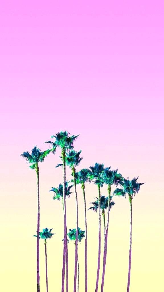 Pink Palm Tree Wallpaper Pink Palm Tree Wallpaper Palm - Palm Tree , HD Wallpaper & Backgrounds