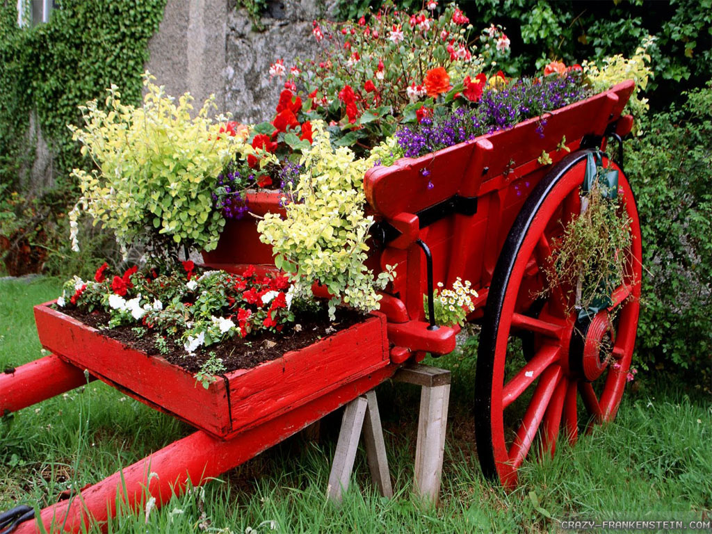 Carriage Beautiful Flower Garden Wallpapers - Beautiful Rose Garden Flowers , HD Wallpaper & Backgrounds