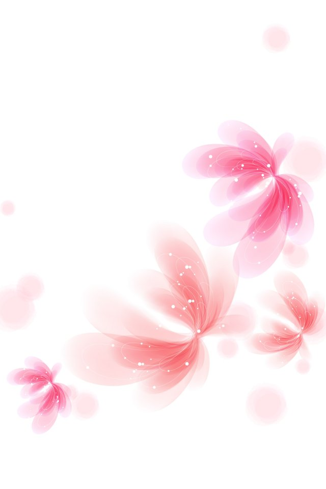 Pink Flower Butterfly Iphone Wallpaper White Floral Wallpaper