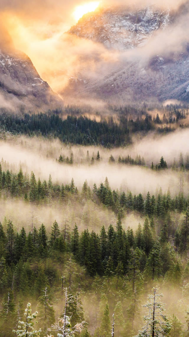 Misty Mountain Wallpaper - Forest Mountains Iphone , HD Wallpaper & Backgrounds