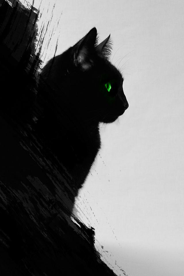 Black Cat Wallpaper Black Cat Wallpaper Hd 121945 Hd Wallpaper Backgrounds Download