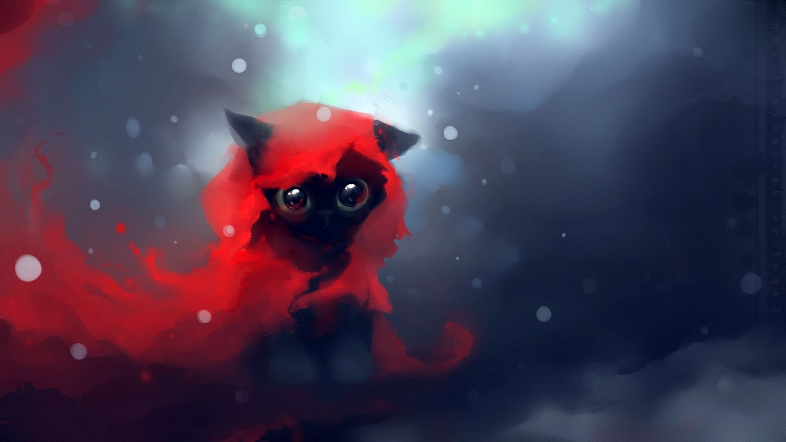 Red Cat Wallpaper Little Red Riding Hood Cat 122121 Hd