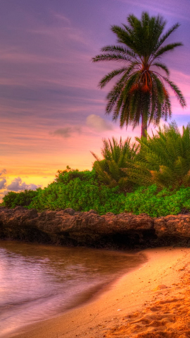 Beach Sunset Tropical Island Iphone 6 Wallpaper Summer