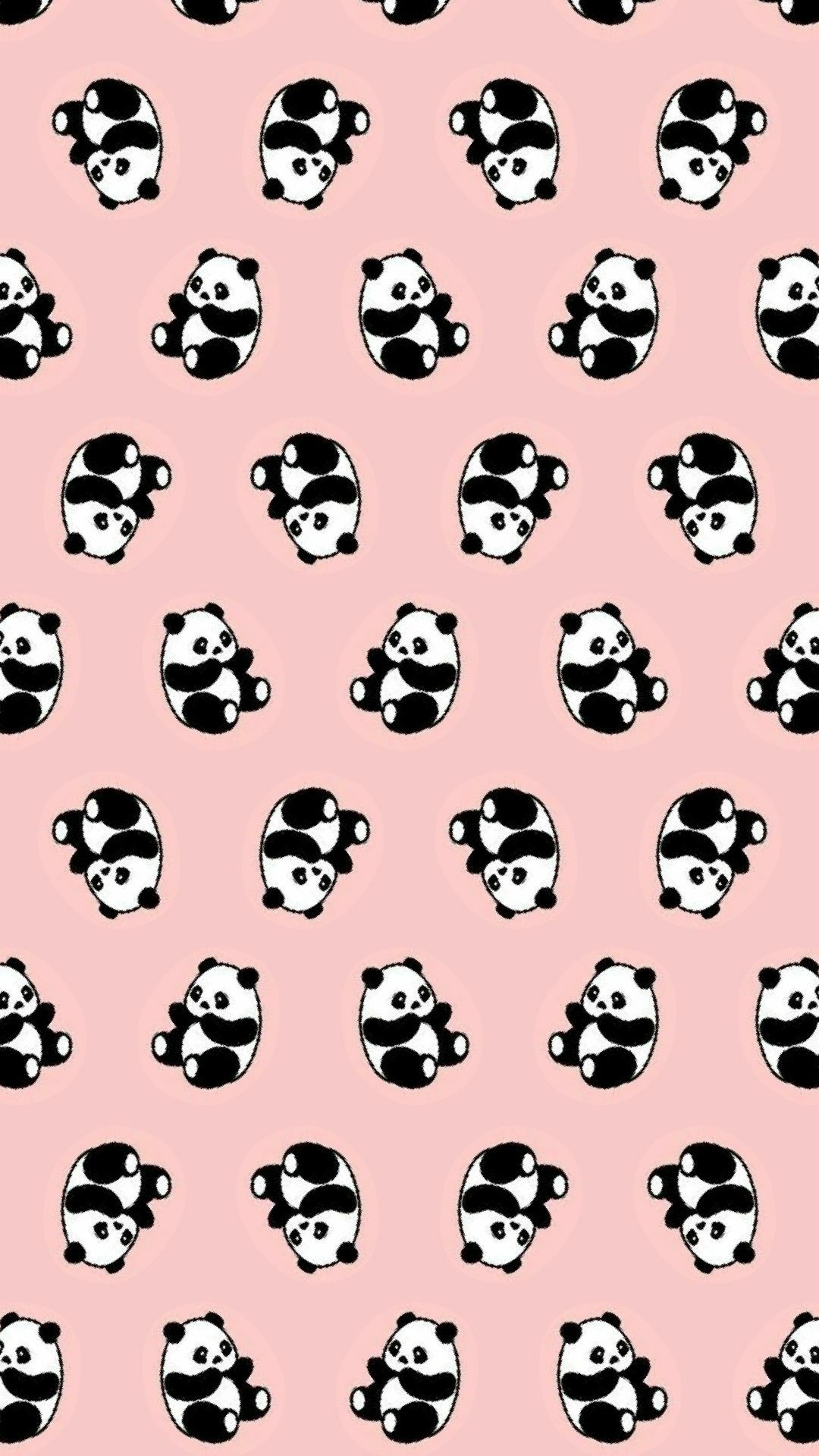 Gambar Panda Untuk Wallpaper Wa HD Wallpaper