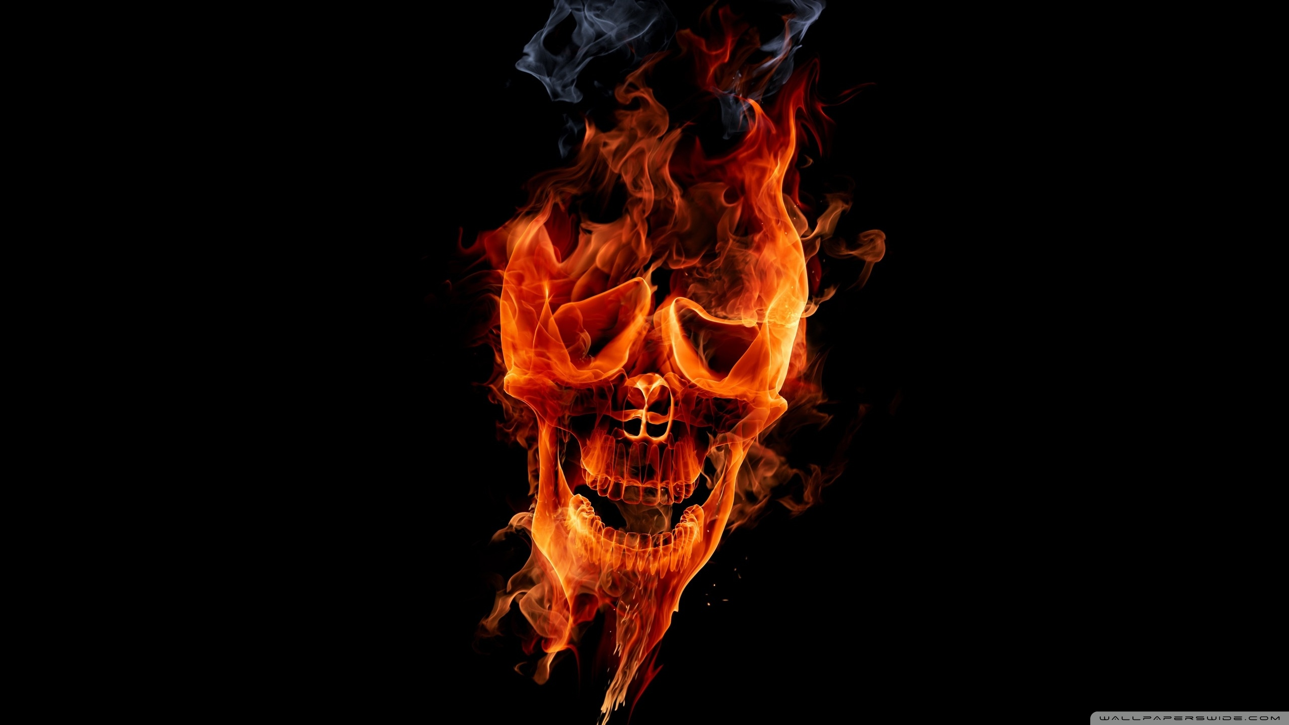 Standard - Fire Skull , HD Wallpaper & Backgrounds
