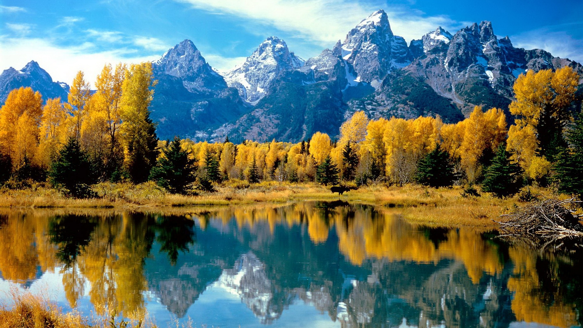 Hd Wallpaper 1080p 1080p Desktop Backgrounds Nature 127547 Hd Wallpaper Backgrounds Download