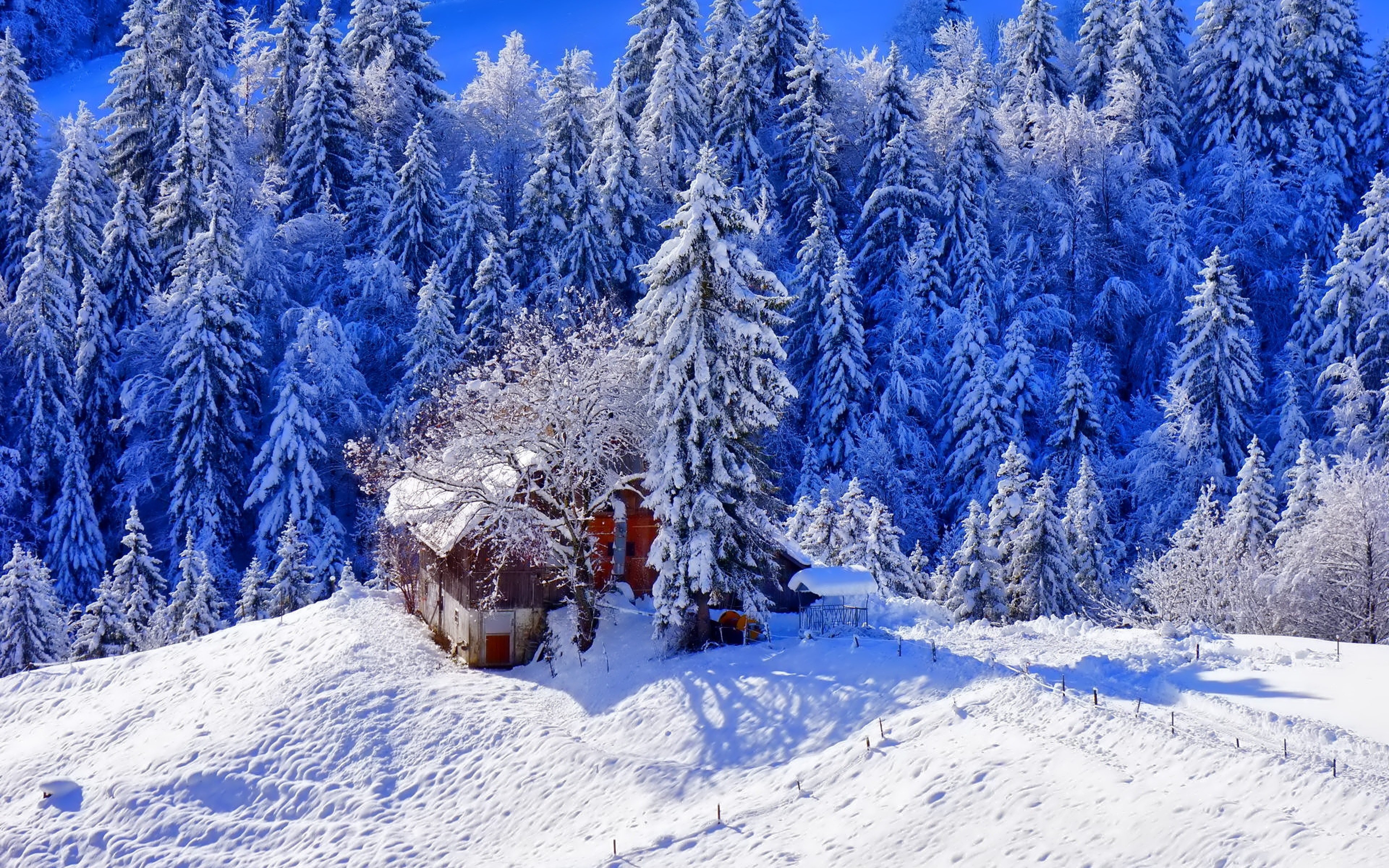 Hd Background Winter Snow House Ice Trees Hill Wallpaper