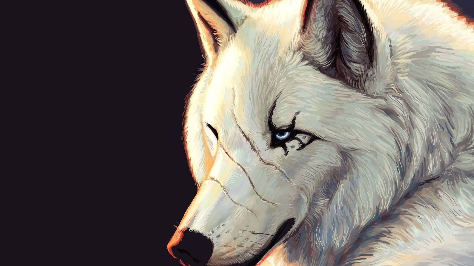 White Wolf Wallpaper Phone Is Cool Wallpapers Cool Wolf Wallpapers Hd 129648 Hd Wallpaper Backgrounds Download