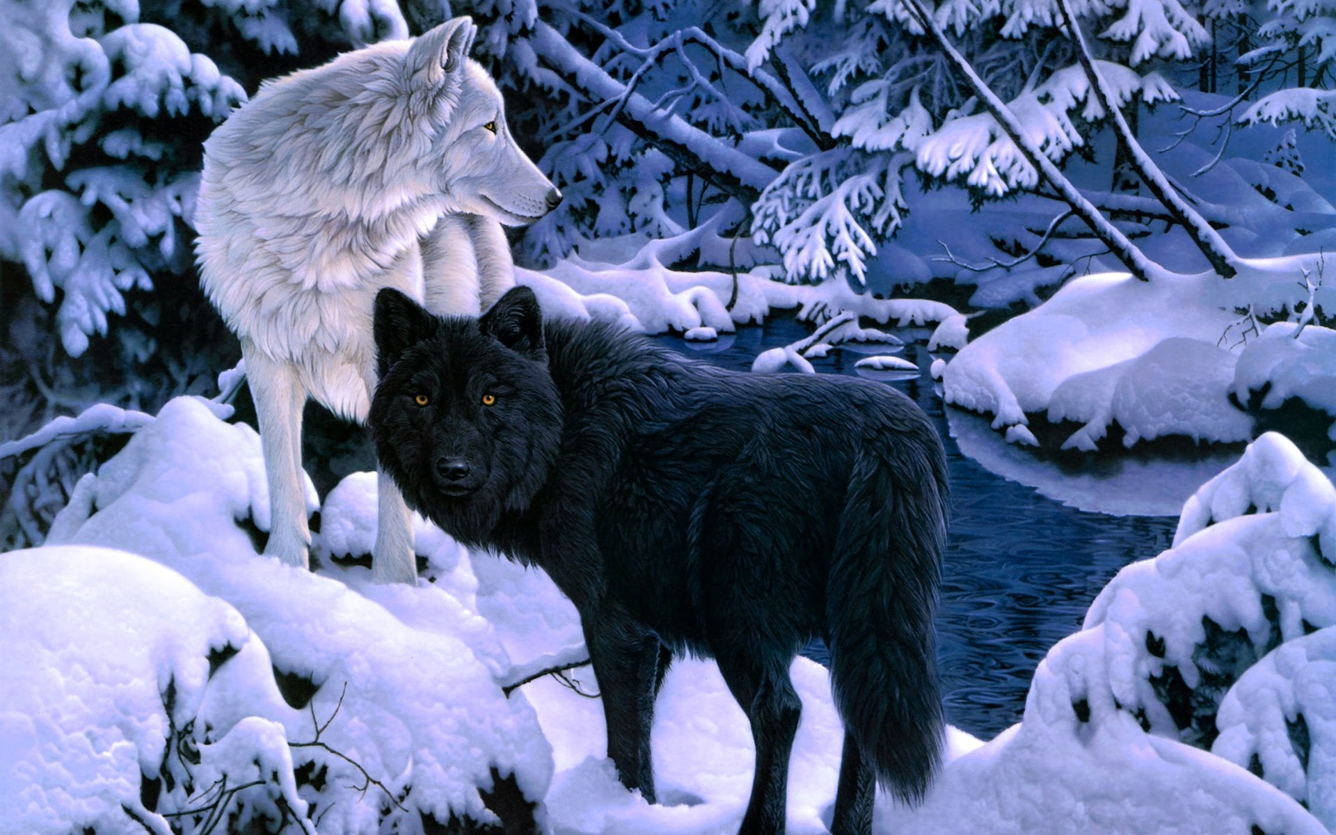 Wolf Wallpapers For Iphone White And Black Wolf 129976 Hd