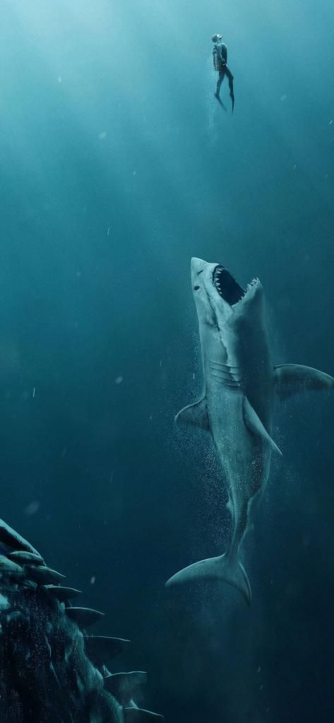 Iphone X Wallpaper The Meg Movie 4k Rb 11252436 Hd Shark