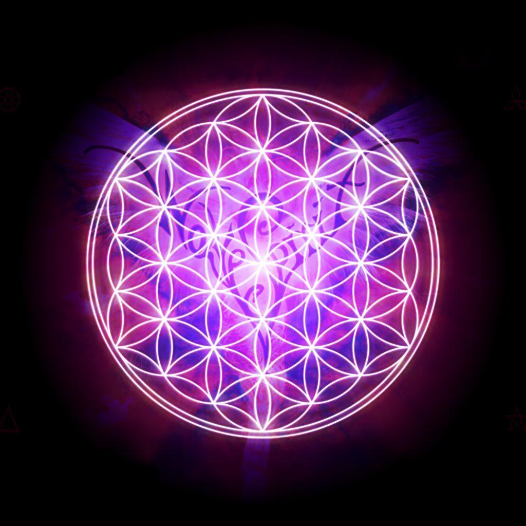 Sacred Geometry Wallpaper Hd Gold Flower Of Life Transparent