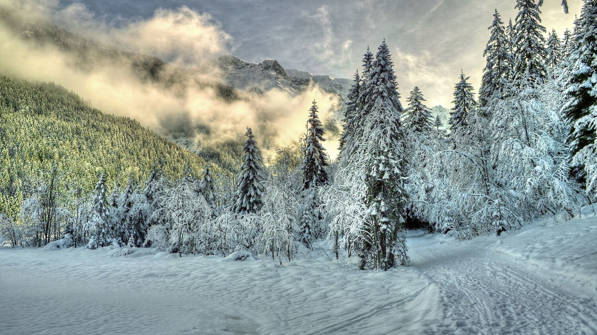 Paysage Hiver Hd 1221427 Hd Wallpaper Backgrounds Download