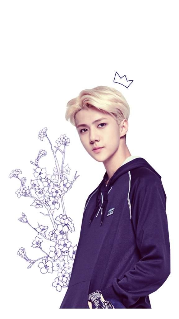 Wallpaper {oh Sehun} - Lockscreen Exo Sehun , HD Wallpaper & Backgrounds