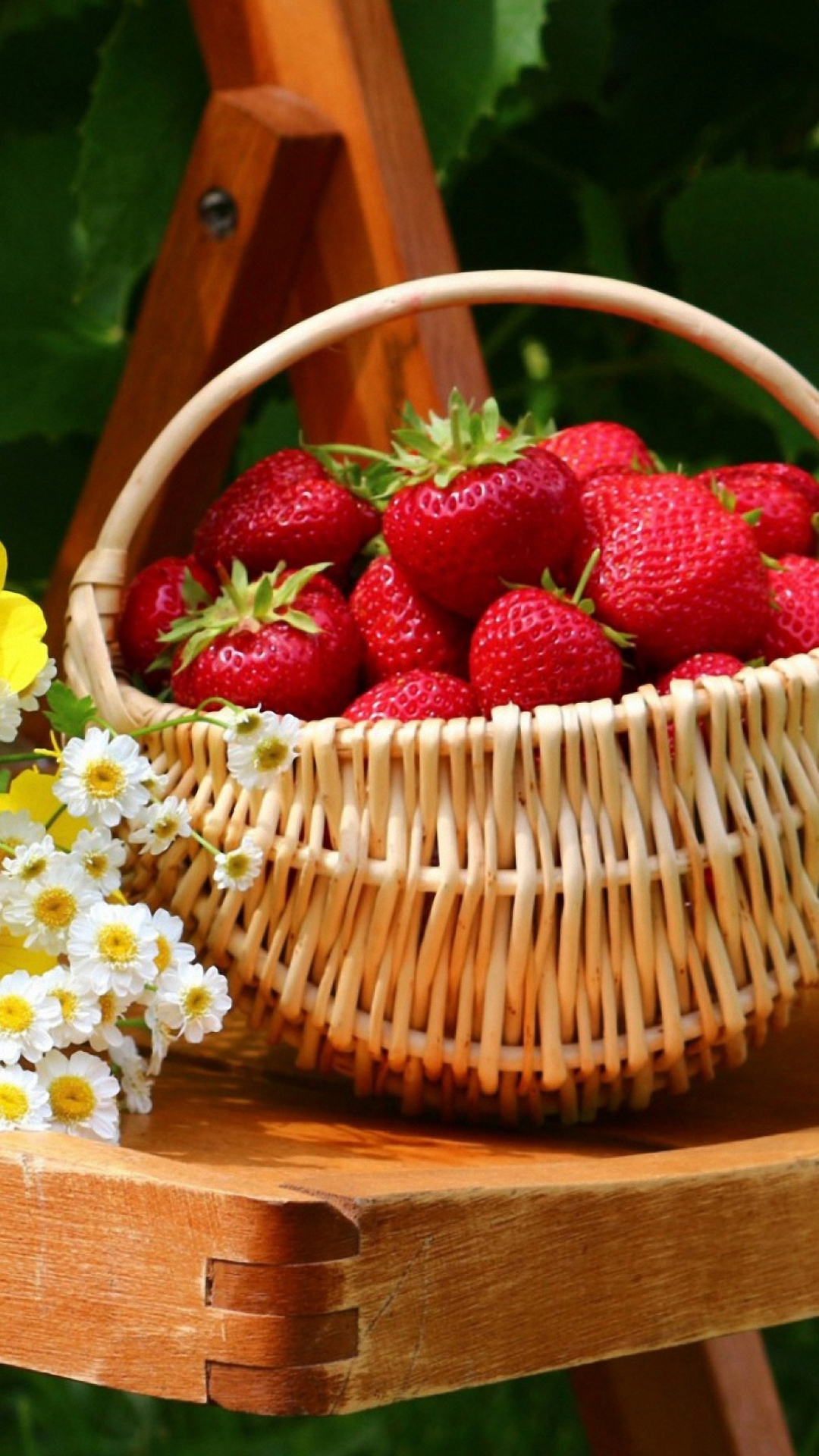 123 1233164 strawberry basket iphone 6 wallpapers hd strawberry wallpaper